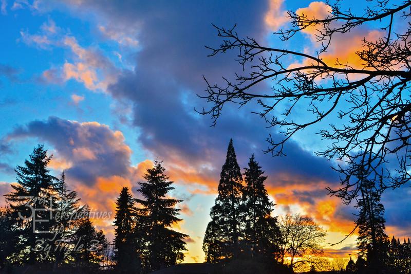 Ordinary Oregon - Salem, Oregon - USA
