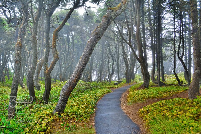 Enchantment - Seal Rock, Oregon - USA