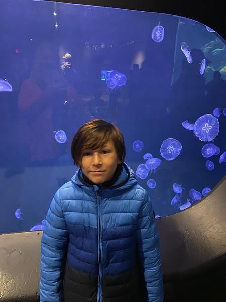 Aquarium Field Trip