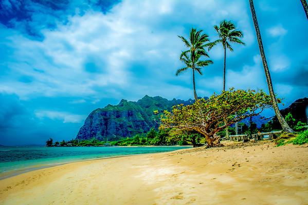 Island Vibrance