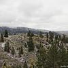 Rocky Mountain Foothills, Boise, ID