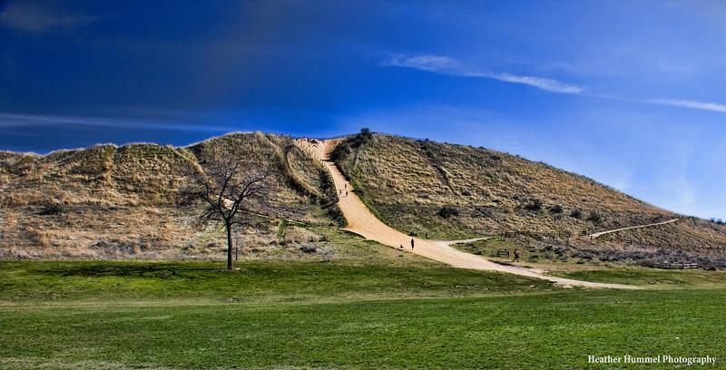Camel's Back Park - Trail Head