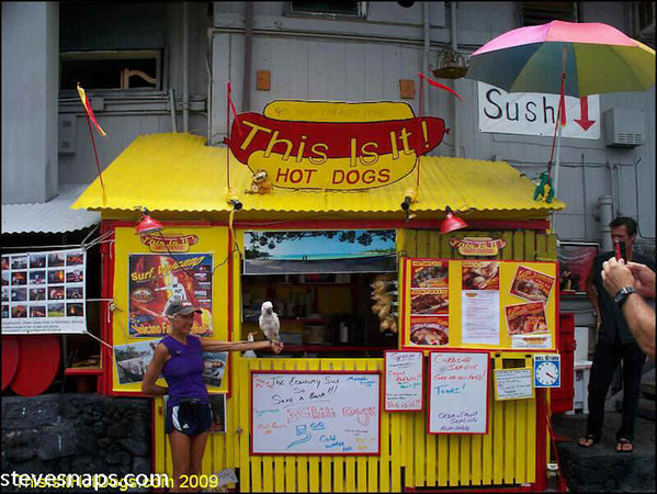 My  Hot Dog Stand in 09