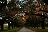 Boone Hall, SC at dusk