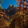 Zion Natl Park - Utah-5