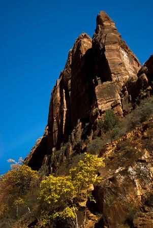 Zion Natl Park - Utah-6
