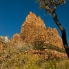 Zion Natl Park - Utah-2