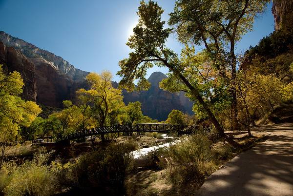Zion Natl Park - Utah-4