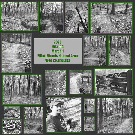 """2020 Hike #4 Photo Slideshows (Set to """"On the Dark Side"""" by John Cafferty & The Beaver Brown Band)"""