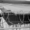 tattered tarp and razor wire