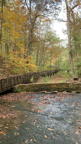 Stream at Spring Mill State Park