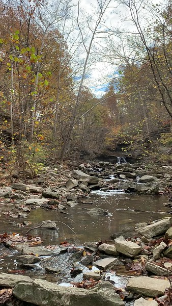 McCormick's Creek and waterfall in McCormick's Creek State Park