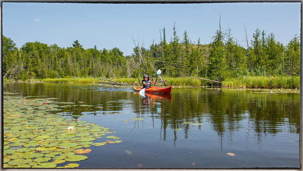 Journey through a magical lagoon...