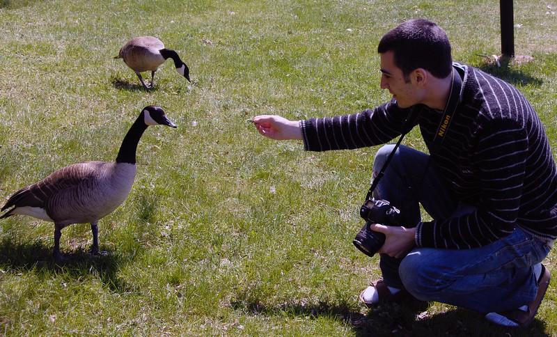 Lonny Feeding Canada Goose