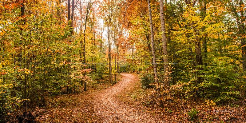 Pocahontas Park in Chesterfield, Virginia