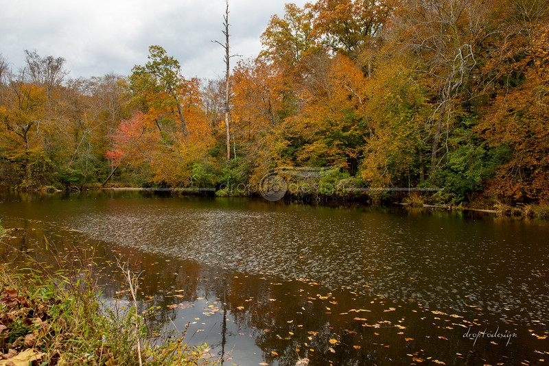 Pocahontas Park in Chesterfield, Virginia