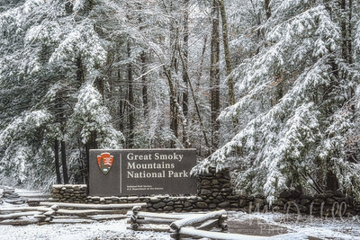 Snow In The Great Smoky Mountains National Park