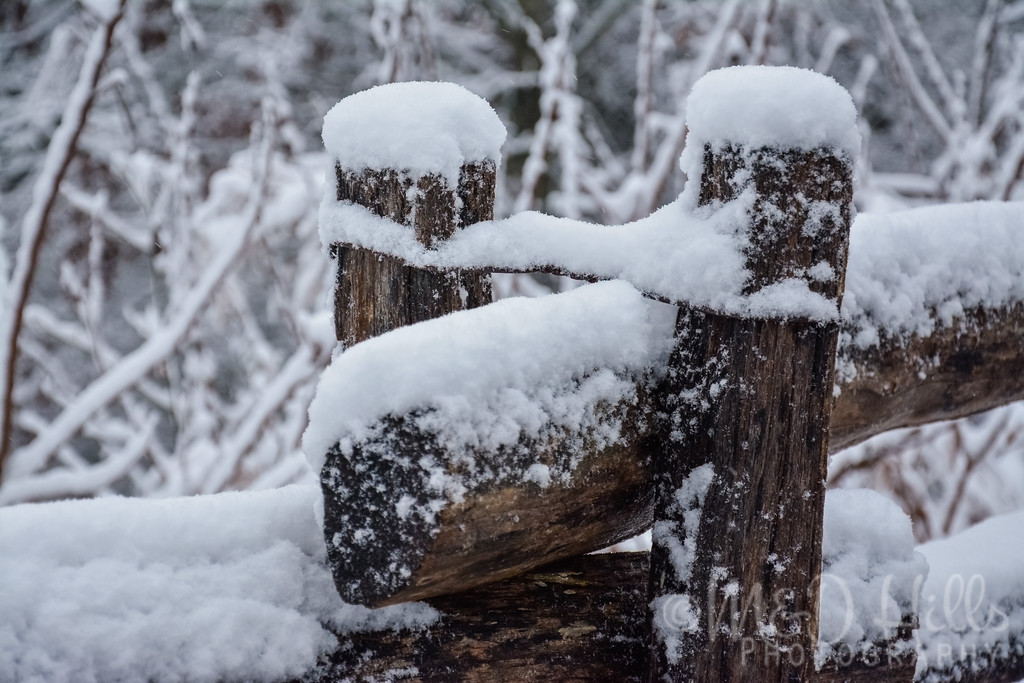 Snow On A Split Rail Fence