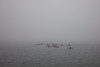 Kayak Fog - Sep'13  /  Through Water