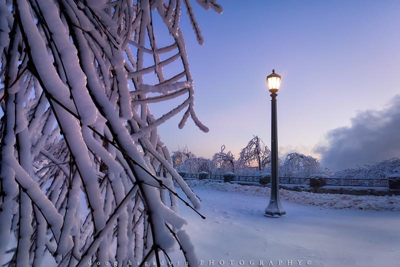 Frozen Mist (#0239)