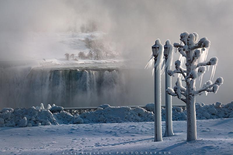 Through Winter's Mist (#0677)