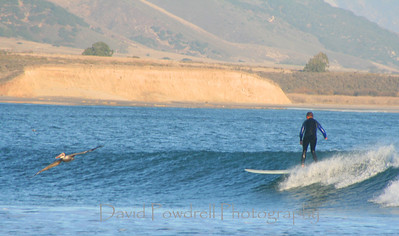 Surfing - Bixby Ranch - post stroke