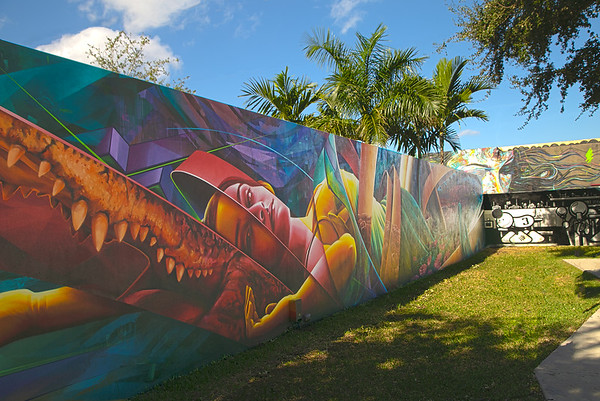 Wynwood Wall Art (Wynwood Art District, Miami, Florida)
