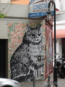 Giant Grafitti Cat