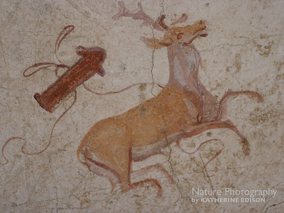 Ancient Roman Stag