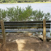 Bench overlooking Wappoo Cut