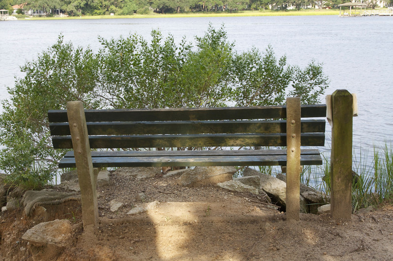 Bench overlooking Wappoo Cut