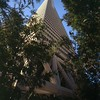 Transamerica Pyramid, San Francisco, Calif., 1973