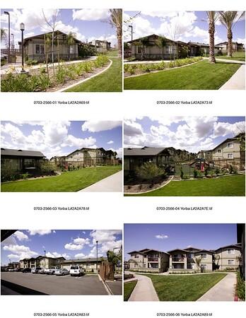 Yorba Linda Palms, Yorba Linda, Calif., 2007