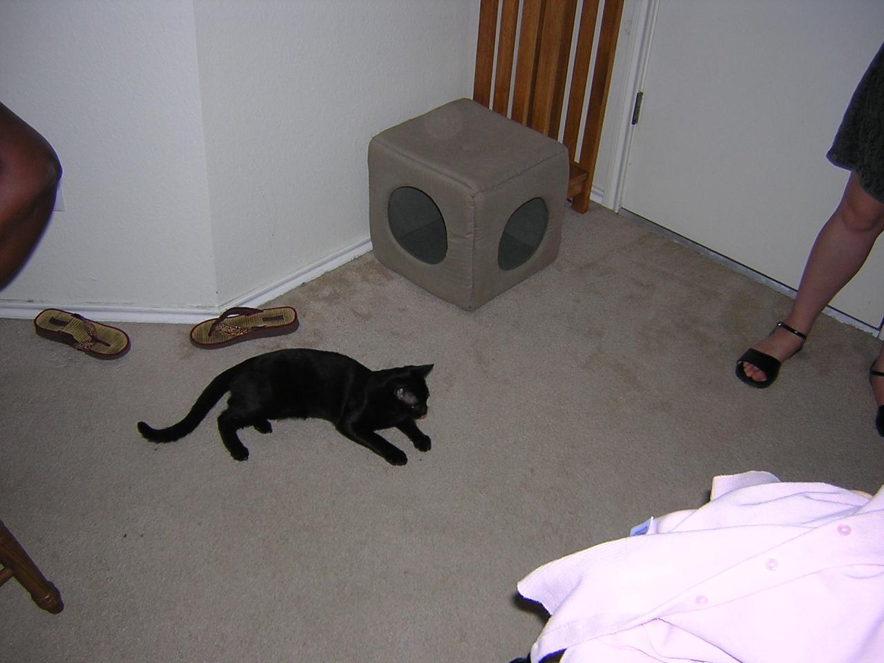 Sunday, April 24, 2005  02:04AM