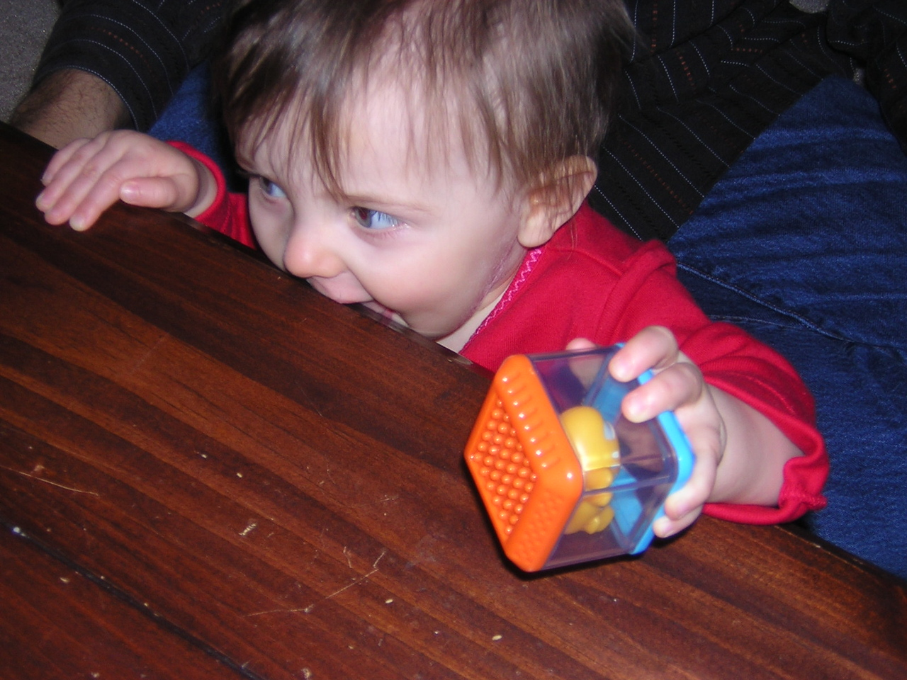 Stella tries to eat Aunt Christine and Uncle Brian's coffee table.nDSCN6134.JPG