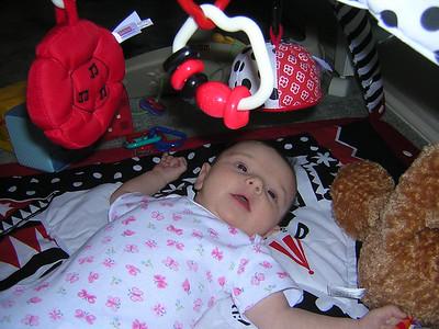 More Stella Photos May 11-28th, 2006\n