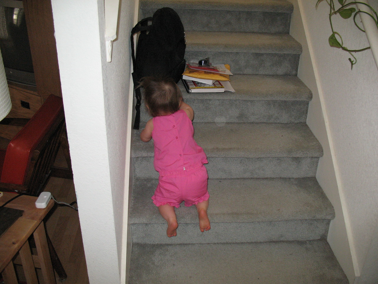 Stella discovers the stairs!