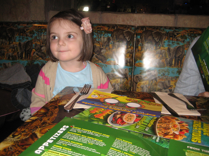 In wonder at the magic of the Rainforest Cafe