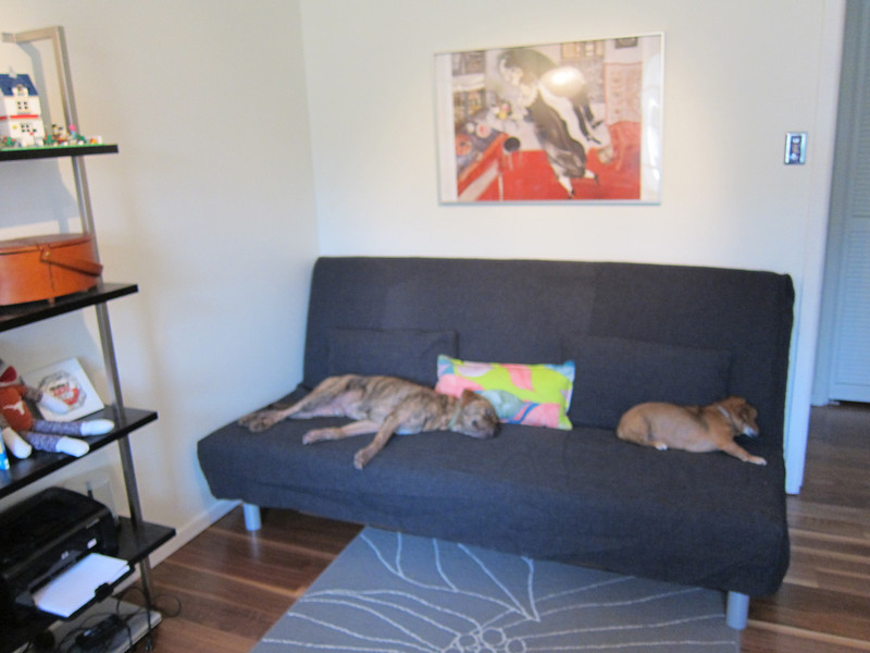 new couch.  was immediately co-opted by the dogs and is now quite furry:(