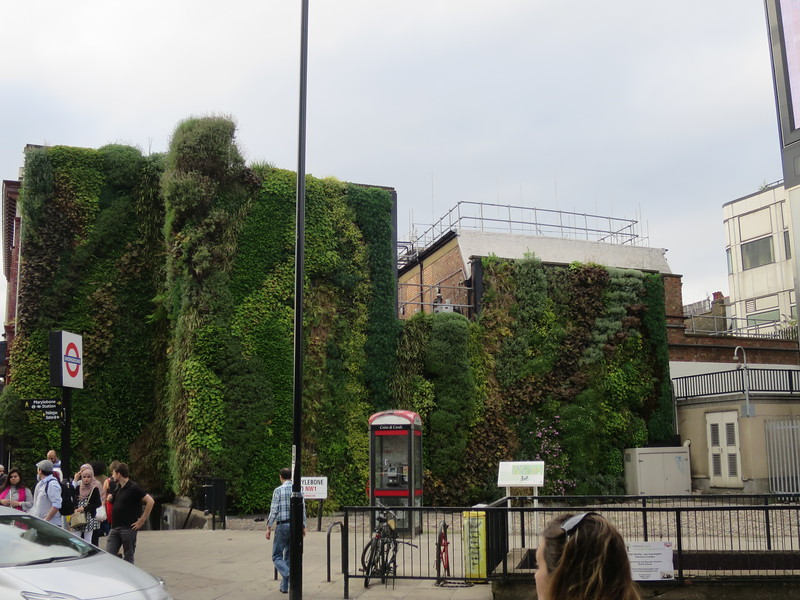 Super cool living wall by the tube stop