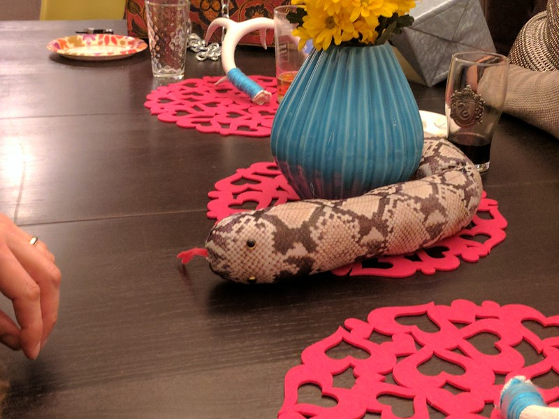 Tara's pet snake