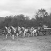 (09.13.53) Kaier's Beer Wagon.