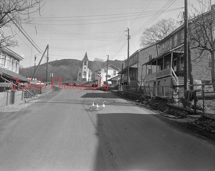 (1964) Burnside.