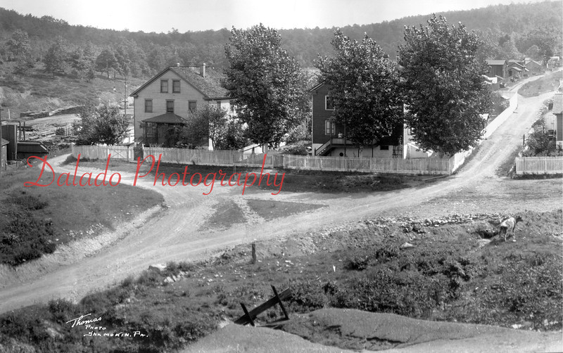 Burnside- These homes are still standing today. Present-day Route 125 now travels to the left of the houses. (Did you find the random cow walking around?)