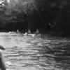 (1978) Boy Scouts on the creek.