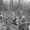 (1967) Boy Scouts along creek.
