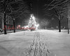 (Dec. 1952) Shamokin community Christmas tree.