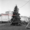 (1958 or 59) Community Christmas tree along Independence Street.