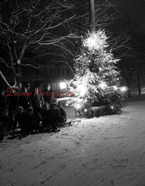 (Dec. 1952) Shamokin community Christmas tree.