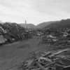 Shamokin scrap yard.